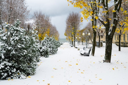 Alley in the Park later in the autumn  Snow storm Stock Photo