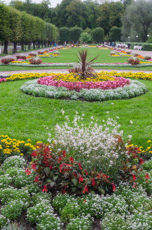 Beautiful flower bed in park photo