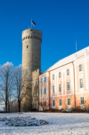 herman: View of the tower Long Herman and the parliament building in Tallinn