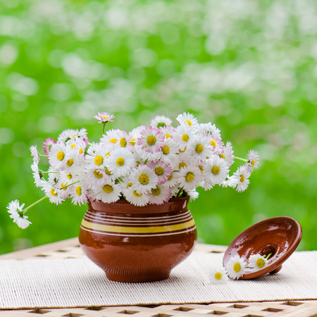 ronantic: A bouquet of daisies in a pot at the table Stock Photo