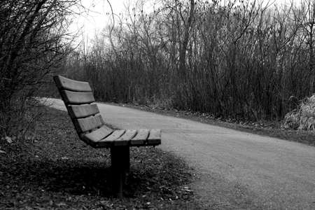 Lonely bench in B&W photo
