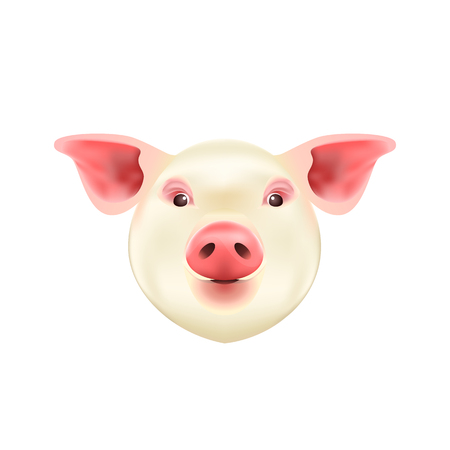Pig Head Isolated on White Background. Symbol of 2019 Chinese Year of the Pig. Vector Icon. Illustration