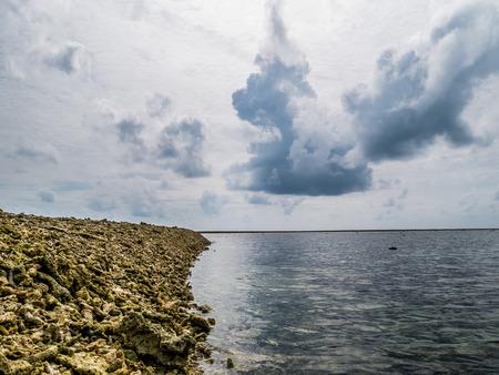 원격 섬의 Nai Yang 해변, Sirinath 국립 공원, 푸켓, 태국에있는 해변에 누워 죽은 산호 조각의 총을 닫습니다. 산호초는 환경 오염으로 인해 위험에 처해있
