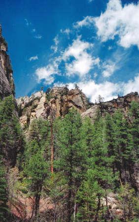 sedona: Oak Creek Park Sedona Arizona