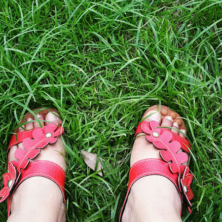 red shoes: Red shoes on green grass