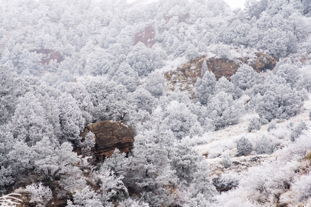 A frosty view in the Colorado Rockies