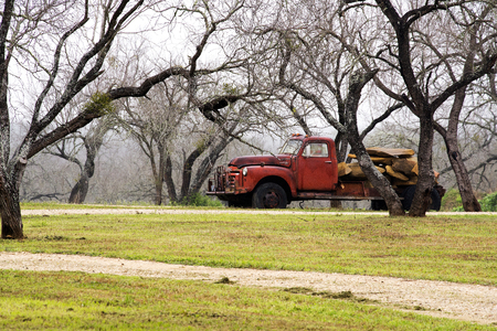 Vintage Truck in the Woods on a Foggy Day in Texas