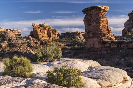 View from the Needles District in Canyonlands National Park