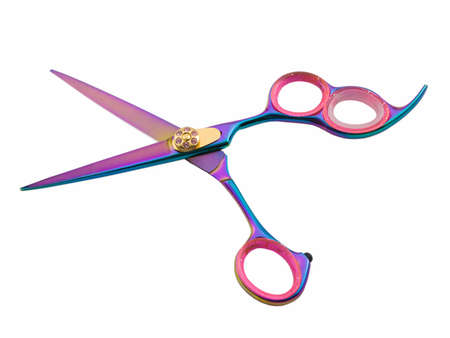 shears: Photo of hair cutting shears isolated on white