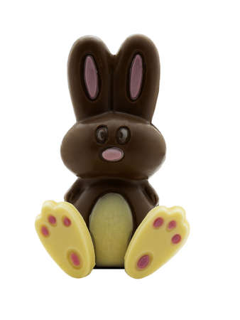 Photo of a chocolate easter bunny isolated on white