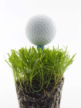 T シャツ、白で隔離草のゴルフ ・ ボール 写真素材