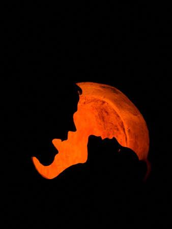 Silhouet van een vampier te bijten een vrouwen-nek