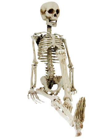 Relaxing skeleton isolated on a white background photo