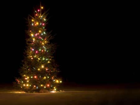the pine tree: Fuera de �rbol de Navidad iluminado por la noche en la nieve