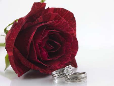 バラは赤の前の 2 つのダイヤモンドの結婚指輪の設定します。 写真素材