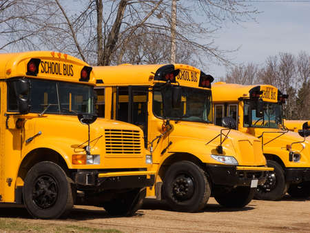 school buses: Several school buses lined up Stock Photo