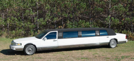White Limousine parked in grass