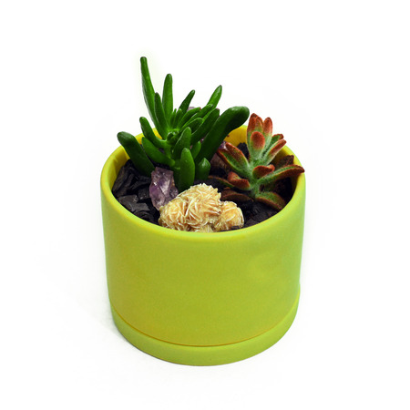 Succulents and desert rose crystal in a small green pot