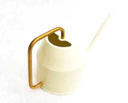 Modern white watering can with gold handle