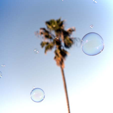 Soap bubbles in front of a palm tree in California