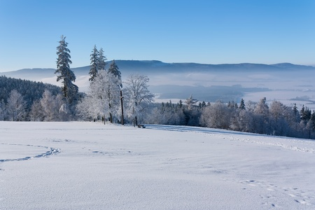 View of Eagle Mountain (Orlicke hory, Czech Republic) with trees and a cross in the foreground Standard-Bild