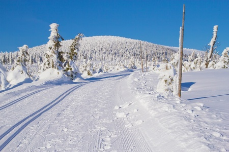 Winter mountain landscape scenery with cross country skiing way  Horizontally   Mountains Jeseniky, Czech Republic  Stock Photo