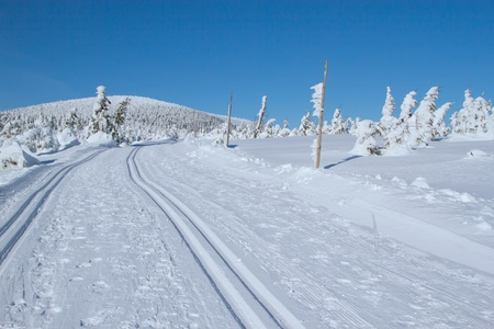 Winter mountain landscape scenery with cross country skiing way  Horizontally   Mountains Jeseniky, Czech Republic