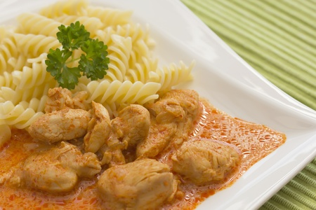 Chicken pieces with Pasta in Paprika Cream Sauce  Decorated with parsley  photo
