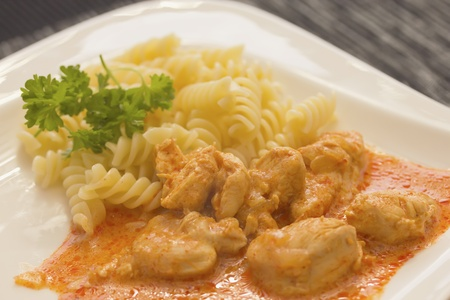 Chicken pieces with Pasta in Paprika Cream Sauce  Decorated with parsley  The dark setting  Stock Photo - 12999404