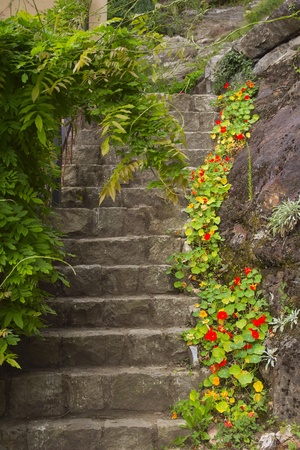 Old stone stairs with flowers and plants in the garden Stock Photo