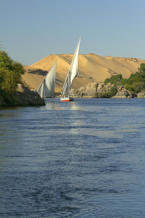 Sailing on the Nile  In the background sand hills and blue sky   near Aswan, Egypt   Vertically