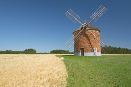 レンガ風車トウモロコシのフィールドの背景 Chvalkovice、チェコ共和国での青い空