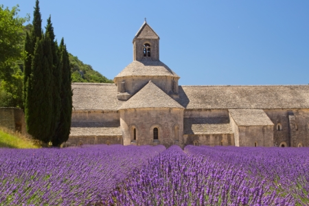 Sénanque Abbey is a Cistercian abbey near the village of Gordes in the département of the Vaucluse in Provence, France  Stock Photo