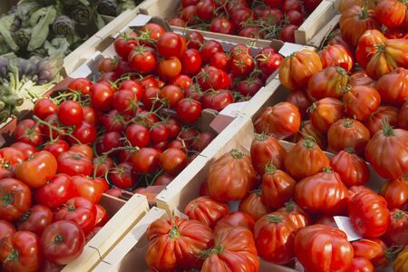 Various types of tomatoes ready for sale at farmers photo