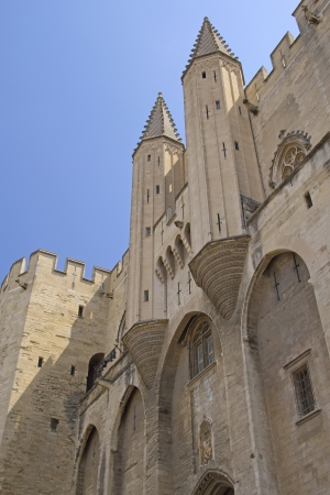 Ancient Avignon Cathedral and Palais des Papes  Avignon, France   Vertically