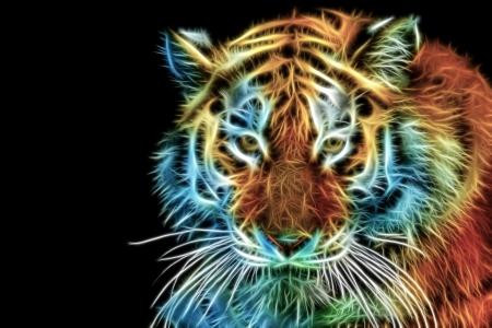 Nahaufnahme von Tiger Kopf Standard-Bild - 25437744