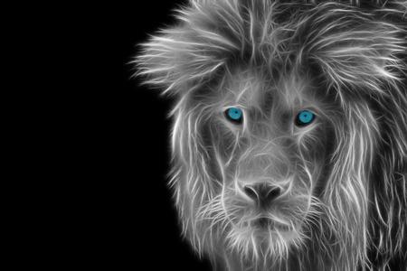 Gedetailleerde weergave van het hoofd van een leeuw Stockfoto