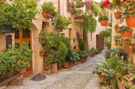 Straat versierd met planten en bloemen in de historische Italiaanse stad. (Spello, Umbrië, Italië.) Horizontaal.