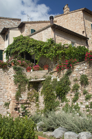 creepers: Old stone house overgrown with creepers and decorated with potted plants Stock Photo