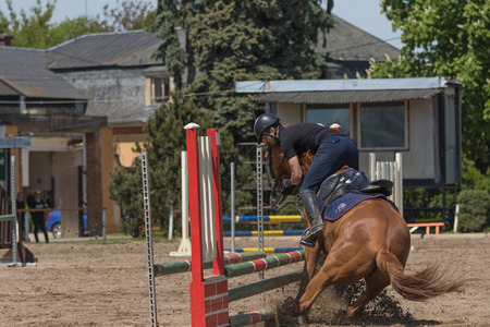 refusing: TRESTINA, CZECH REPUBLIC - MAY 16: The brown horse is refusing to jump an obstacle at Equestrian Hobby Series 2015 on May 16, 2015  in Trestina, Czech Republic. Editorial
