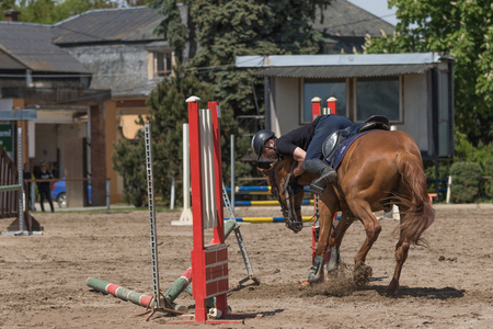 refused: TRESTINA, CZECH REPUBLIC - MAY 16: The brown horse refused to jump over an obstacle at Equestrian Hobby Series 2015 on May 16, 2015  in Trestina, Czech Republic. Editorial