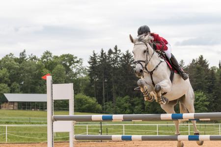 """uomo a cavallo: Svébohov, REPUBBLICA CECA - 23 maggio: vista laterale del primo piano di cavaliere in giacca rossa su un cavallo bianco che salta alla """"Summer Jumping Event 2015"""" il 23 maggio 2015 a Svébohov, Repubblica Ceca."""