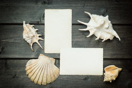 darken: Vintage photo of two blank old photos and seashells are lying on the wooden desk. On the photos is empty space for your text. The photo is edited as a vintage with darken edges.