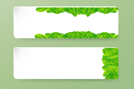 sample environment: Two paper rectangles with the decor of the green leaf. On each shape are tree leaves of different arrangements. All is on the trendy green background.
