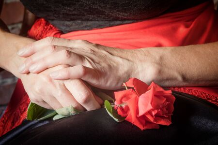 deliberately: Closeup view of the hands of middle aged woman holding a red rose flower in her lap. The photo has deliberately darkened edges. Stock Photo