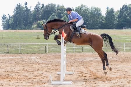 """salto de longitud: SVEBOHOV, República Checa AUG - 20: Vista lateral de un caballo castaño largo salto sobre un obstáculo en """"HobbyJumping Evento 2016"""" el 20 de agosto, 2016 en Svebohov, República Checa."""
