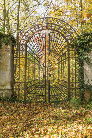 Beautiful old iron locked gate in the park with colorful autumn leaves of trees. Vertically.