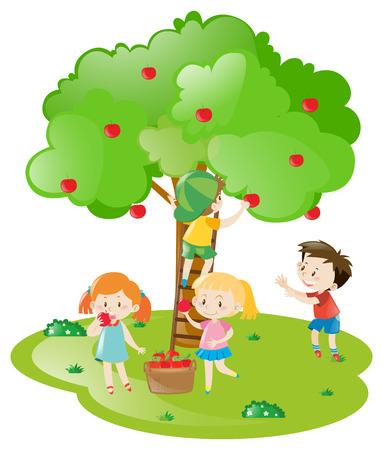 fruit tree: Kids picking apples from apple tree illustration