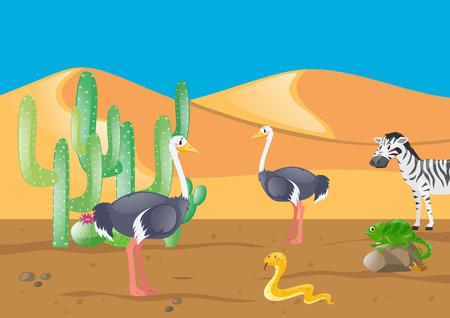 lizard in field: Avestruz y otros animales en la ilustración del desierto Vectores
