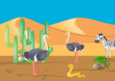 lizard in field: Ostrich and other animals in desert illustration